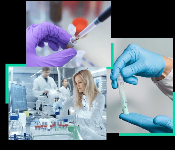 Recoltare probe materii fecale Brasov