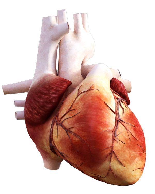 Cardiologie Brasov
